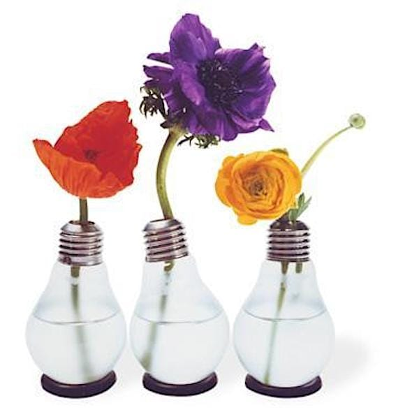 Keep it Stylishly Simple, Lightbulb Vases