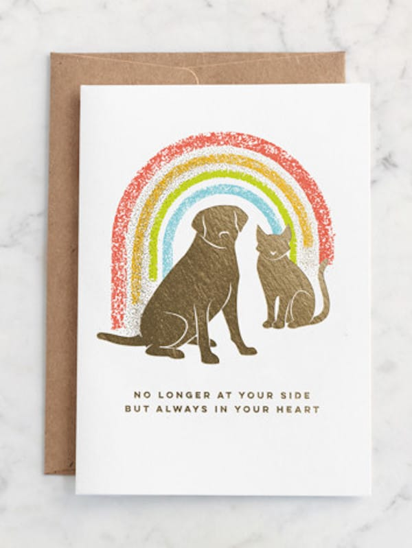 Rainbow Crossing Pet Sympathy Cards