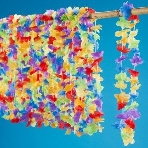 Multi-colored leis