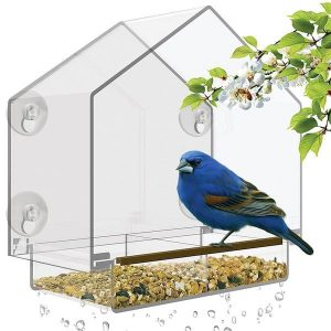 Clear Acrylic Birdhouse and Feeder