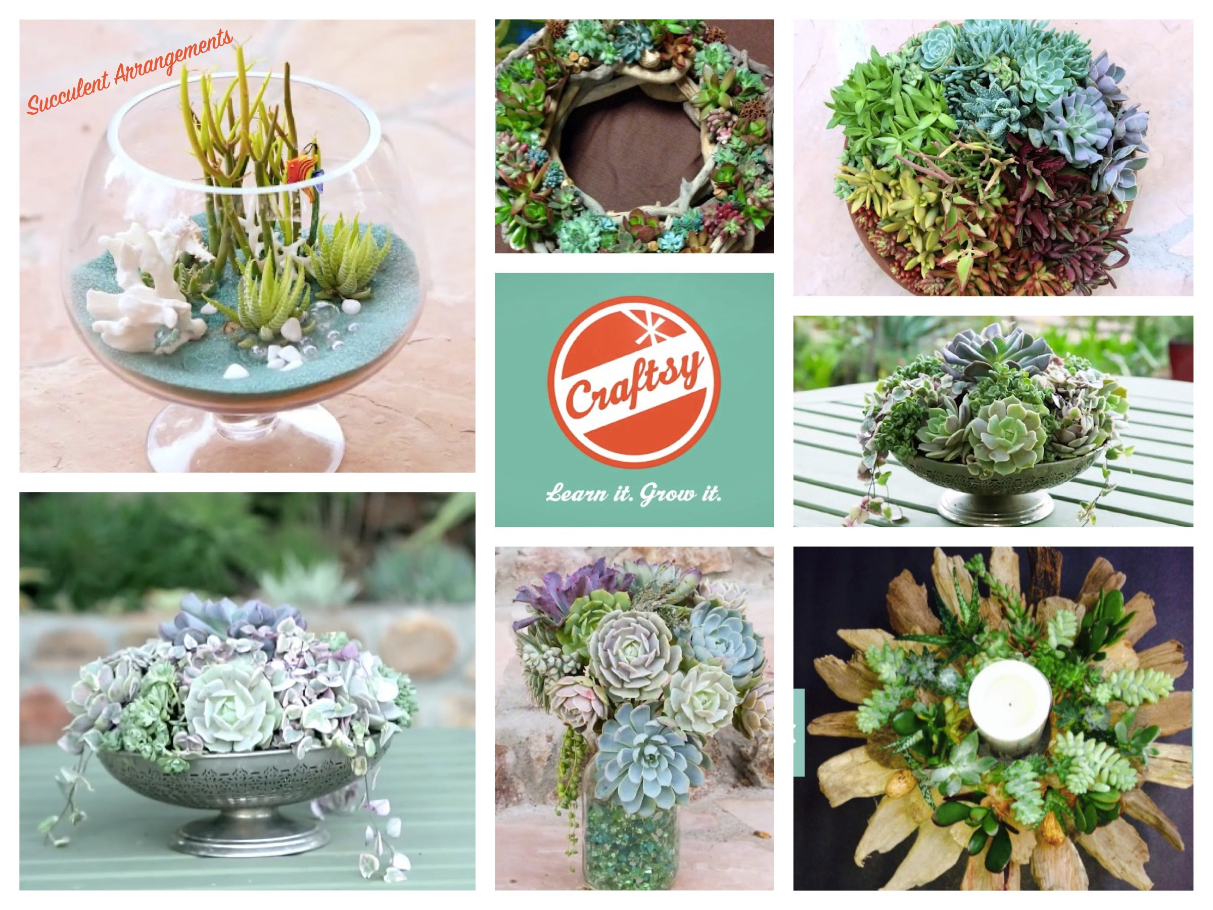 How to Create Stunning Succulent Arrangements