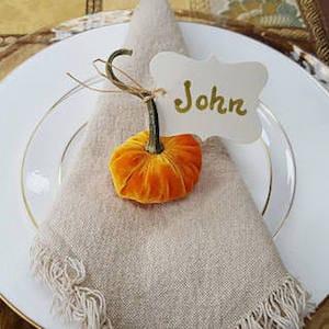 mini velvet pumpkins place card holders