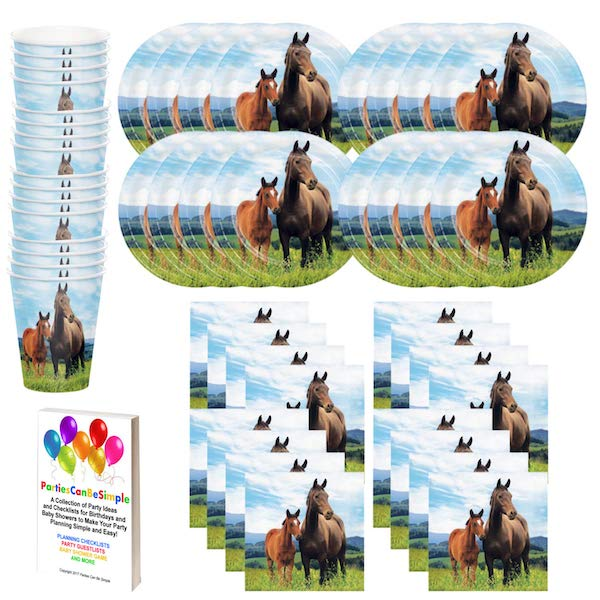 Wild Ponies and Horses Birthday Party Supplies