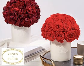 Venus et Fleur - Real Roses that Last a Year