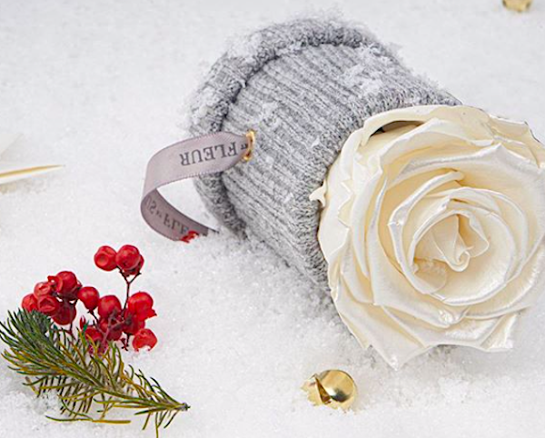 Venus et Fleur Eternity Roses Le Mini Round