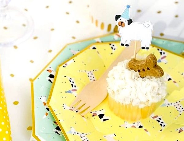 Puppy Kisses Baby Shower -Dog-Pawty-Party-Plates-and-Supplies