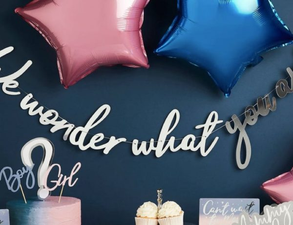 We Wonder What You Will be Baby Gender Reveal Party