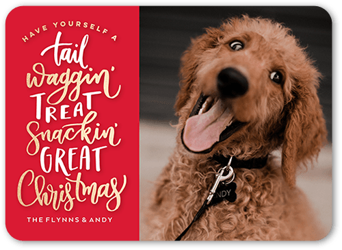A Tail Wagging Time Pet Christmas Card