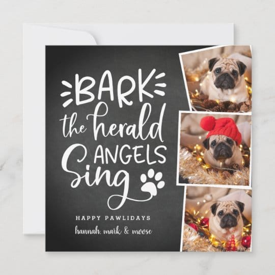 Festive Barks Dog Holiday Photo Card