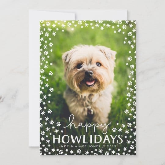 Happy Howlidays Dog Holiday Photo Card