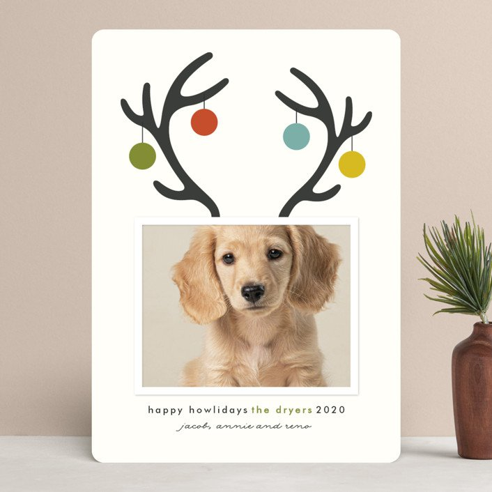 Happy Howlidays Pet Holiday Photo Cards