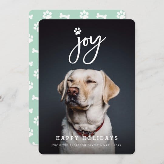 Joy Paw Print Pet Holiday Card