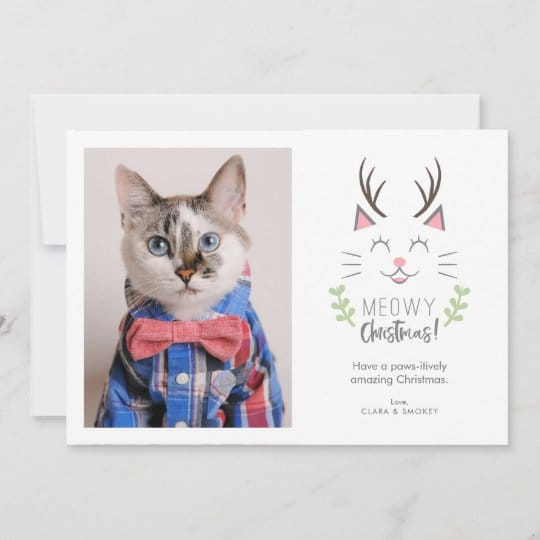 Meowy Christmas Cat Lover Photo Holiday Card