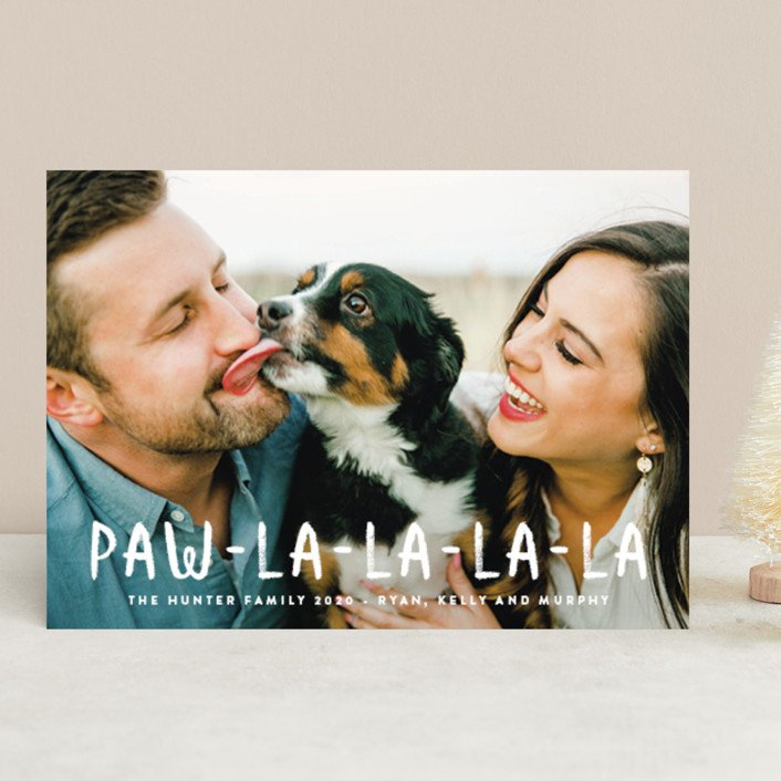 Paw La La Pet Holiday Photo Cards