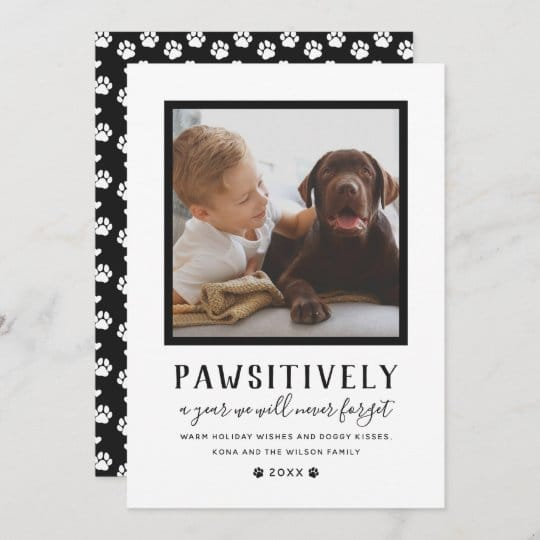 Pawsitively Unforgettable Dog Holiday Card
