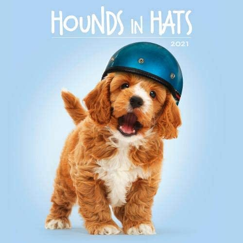 Hounds in Hats 2021 Calendars