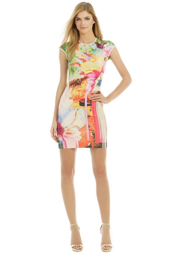 Clover Canyon Griffith Park Print Dress