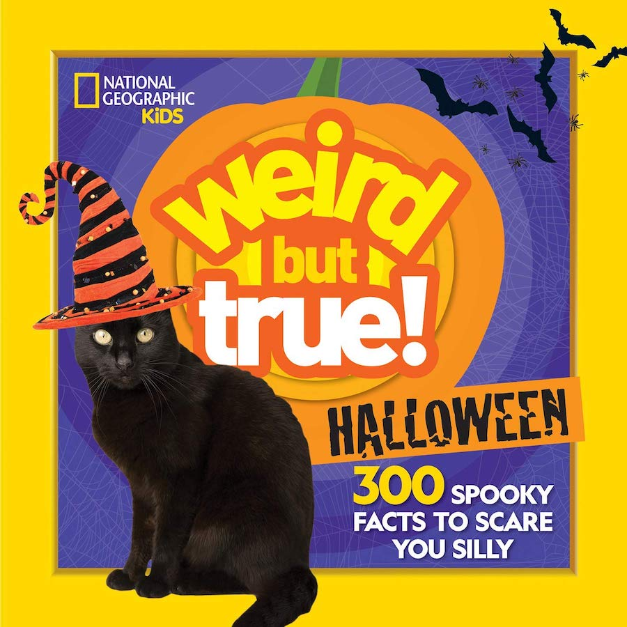 Spooky Facts to Scare you Silly